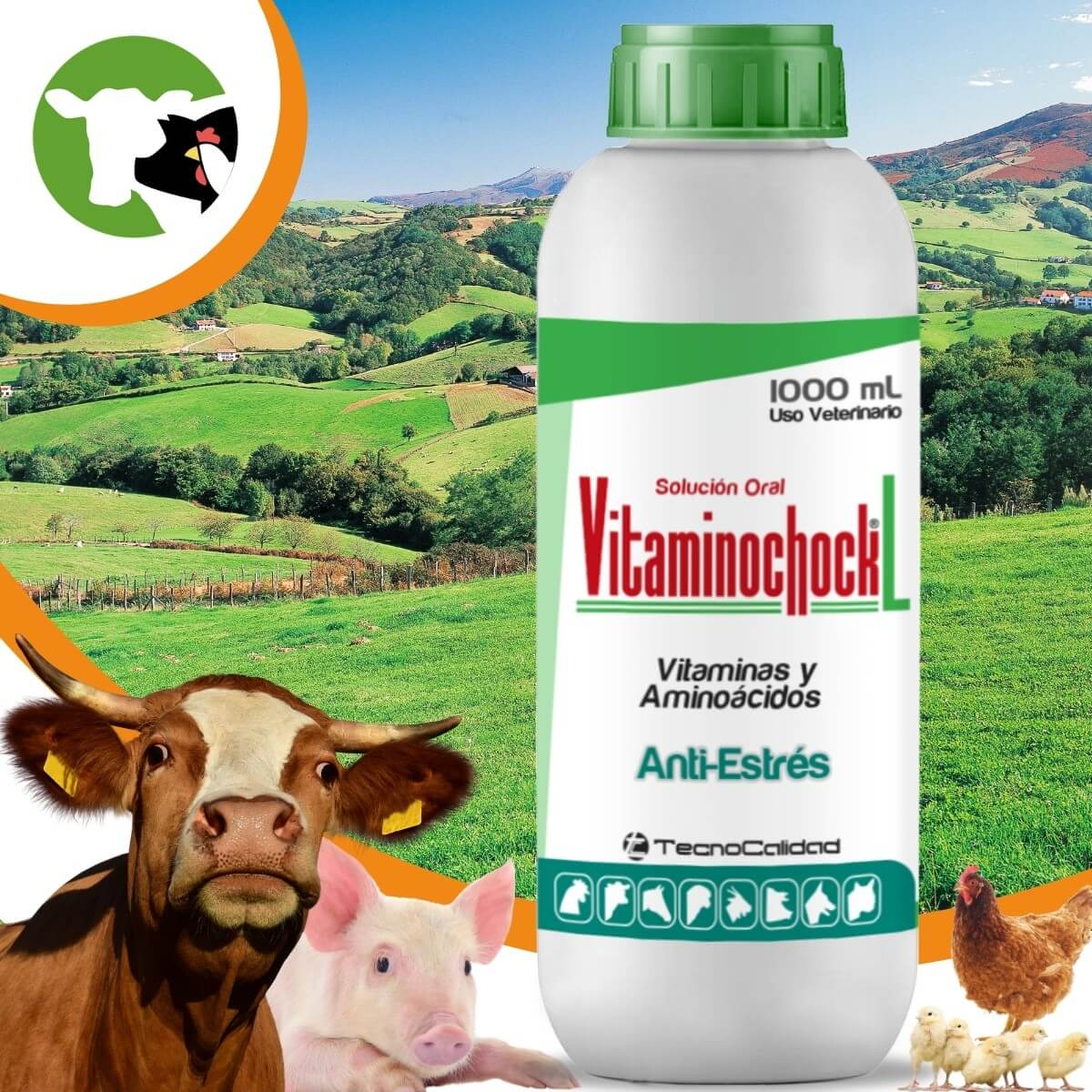 vitaminochock