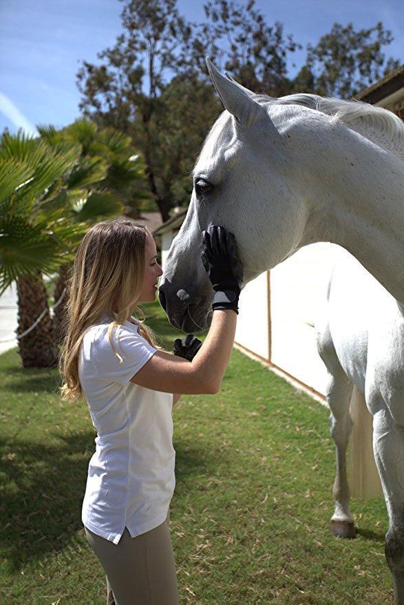guantes para caballos